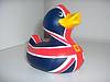 UK duck. jpg